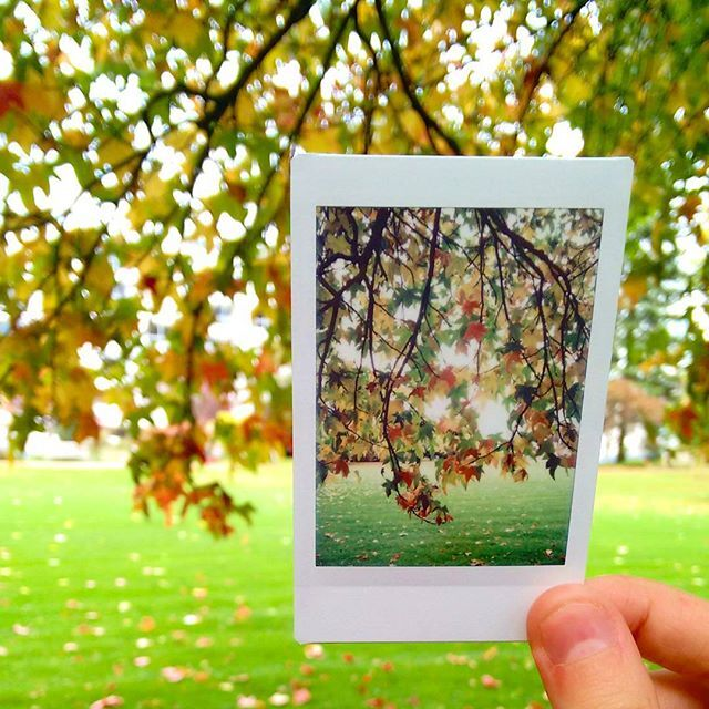 Creative Instant Photography with Kate